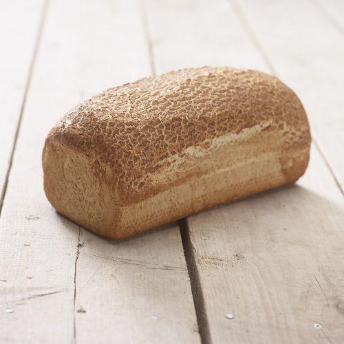 brood 8